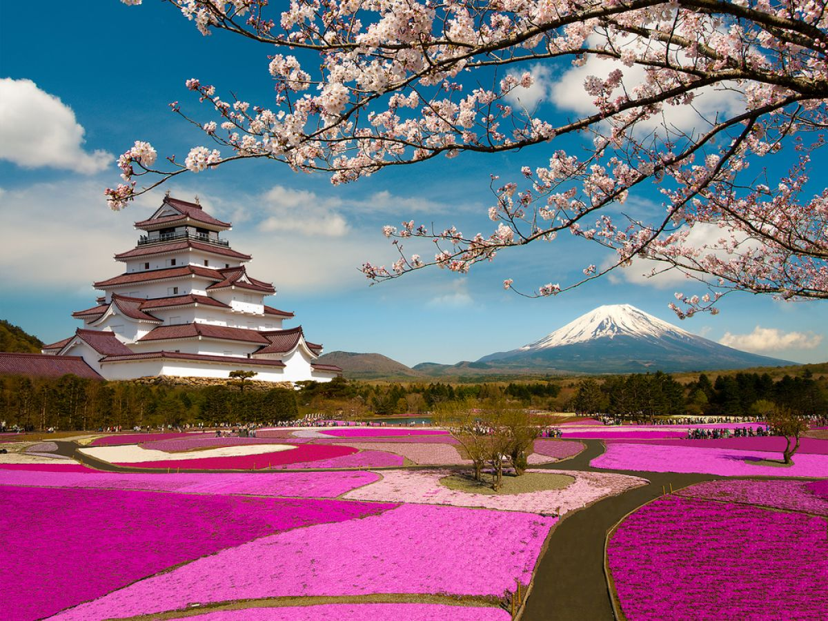 Japan Cruise Holidays Fly Cruises And Cruise Deals In Far East